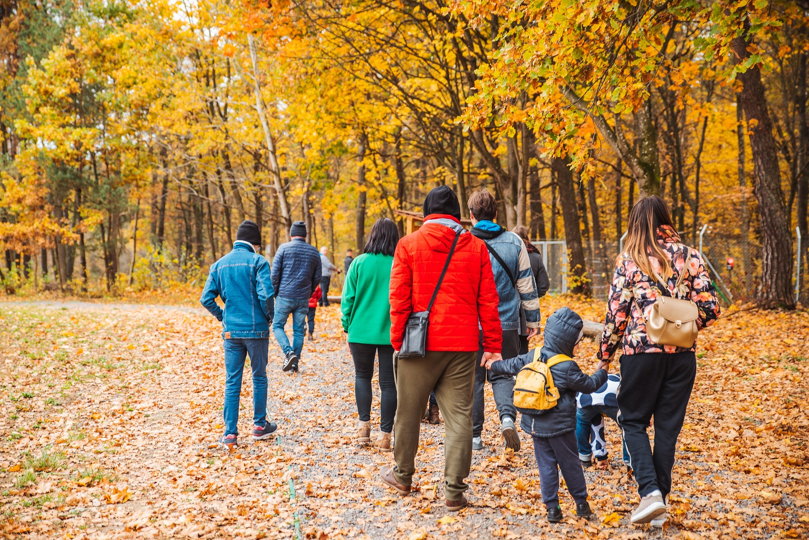 Group Of People Walking By Autumn Forest Trail Families Activiti